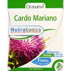 CARDO MARIANO DRASANVI
